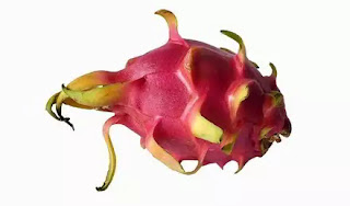 Dragon fruit benefits in hindi, Uses of dragon fruit in hindi, dragon fruit peel benefits for skin in hindi, Benefits of Dragon Fruit in Hindi, Benefits and Side Effects of Dragon Fruits in Hindi, dragon fruit in hindi, dragon fruit peel face mask recipe in hindi, how to eat dragon fruit skin in hindi, dragon fruit benefits for stomach in hindi, dragon fruit benefits for diabetes in hindi, dragon fruit benefits for stomach in hindi, dragon fruit benefits for cholesterol in hindi, kiwi fruit for platelets in hindi,