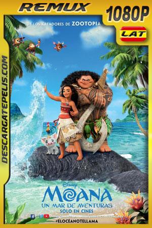 Moana: Un mar de aventuras (2016) 1080p BDRemux Latino – Ingles