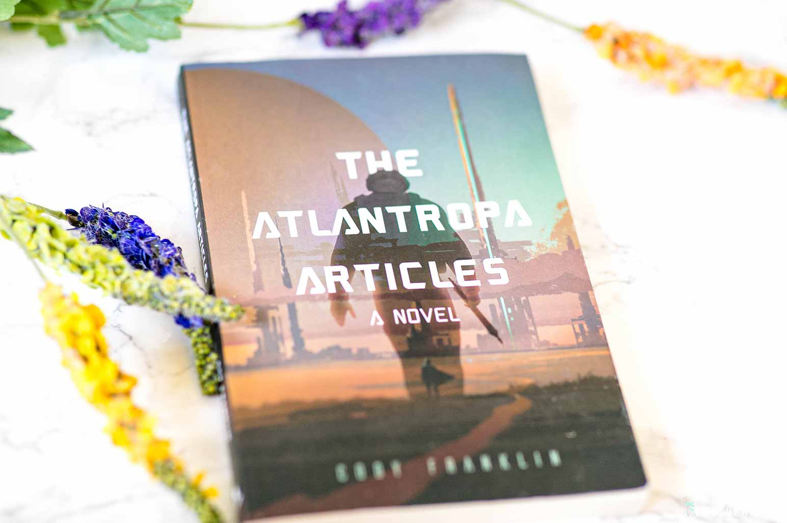 Thee Atlantropa Articles