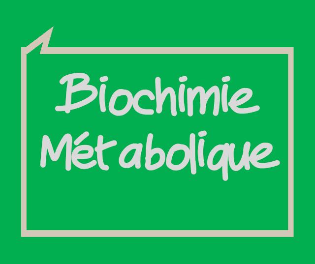 Cours et Résumé Biochimie Métabolique