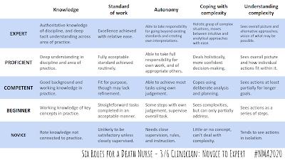 six roles for a death nurse 3/6 clinician #nma2020