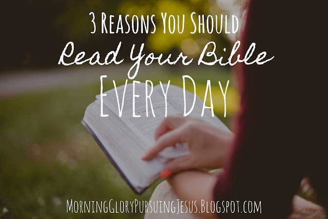 Reasons you should read your Bible every day