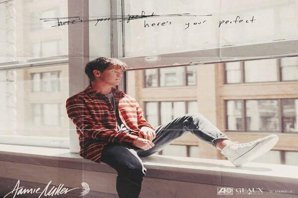 Lirik Lagu Jamie Miller Heres Your Perfect dan Terjemahan