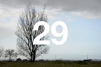 http://www.otchipotchi.com/2018/03/solitary-tree.html
