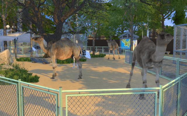 chameau sims 4 à télécharger