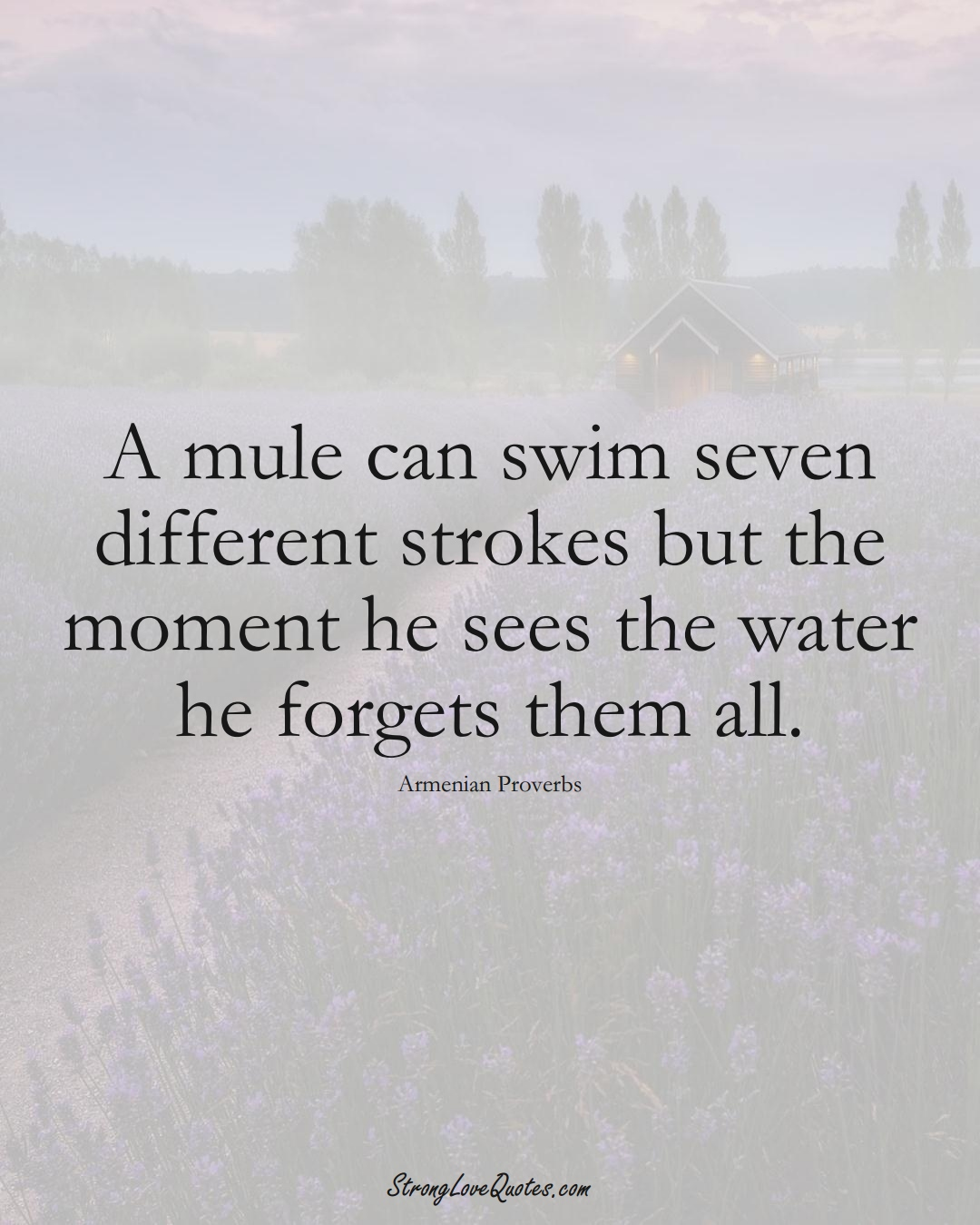 A mule can swim seven different strokes but the moment he sees the water he forgets them all. (Armenian Sayings);  #AsianSayings