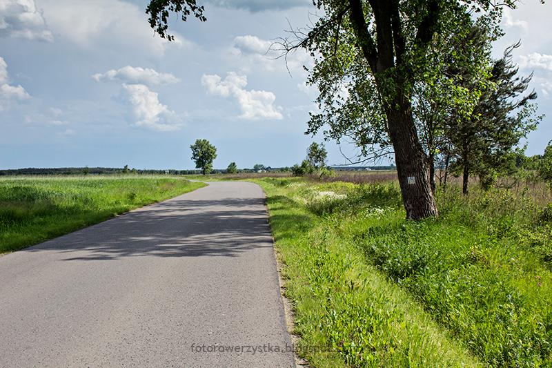 zolty szlak rowerowy
