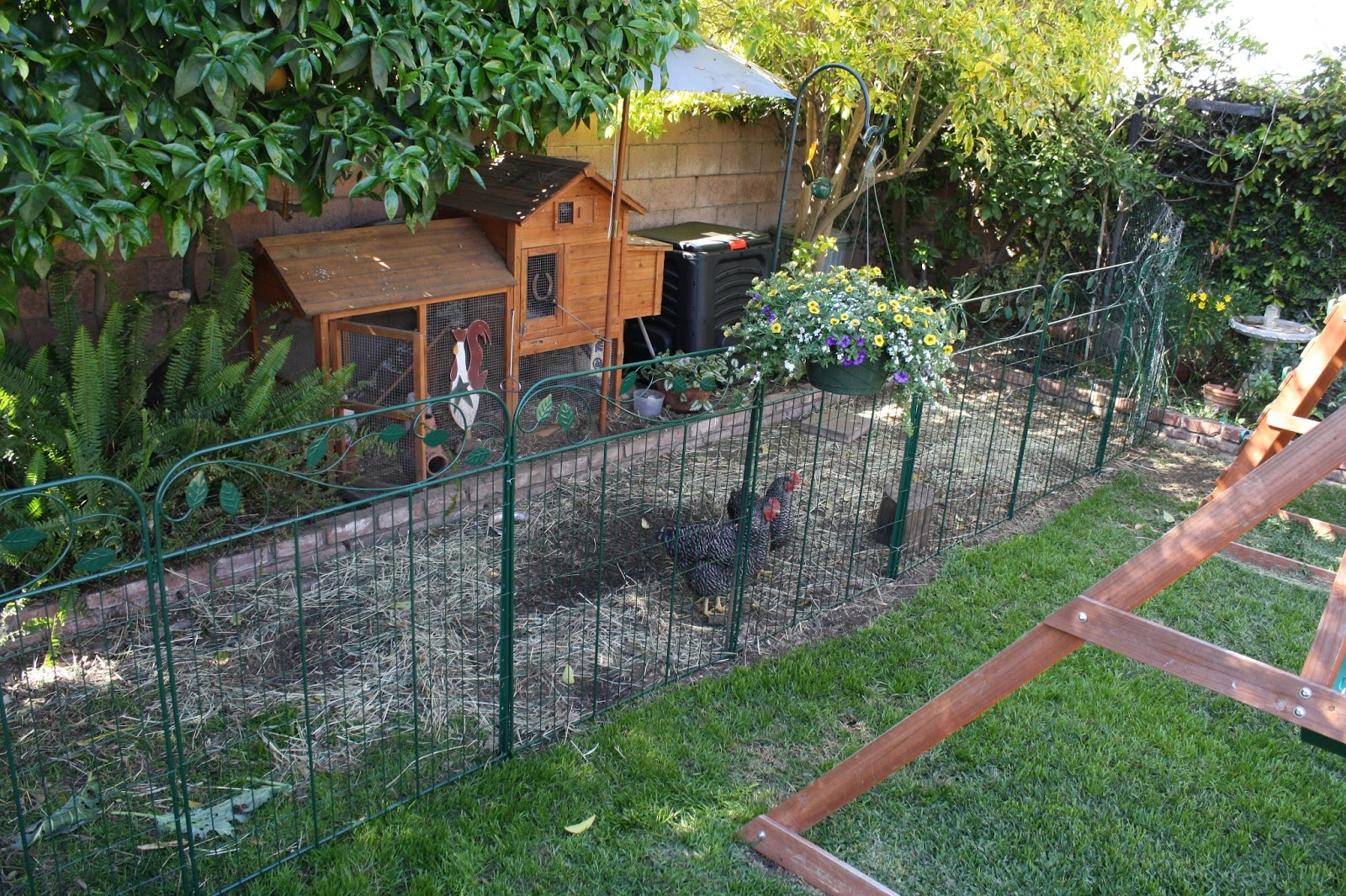 Sunny Simple Life: The New Chicken Fence