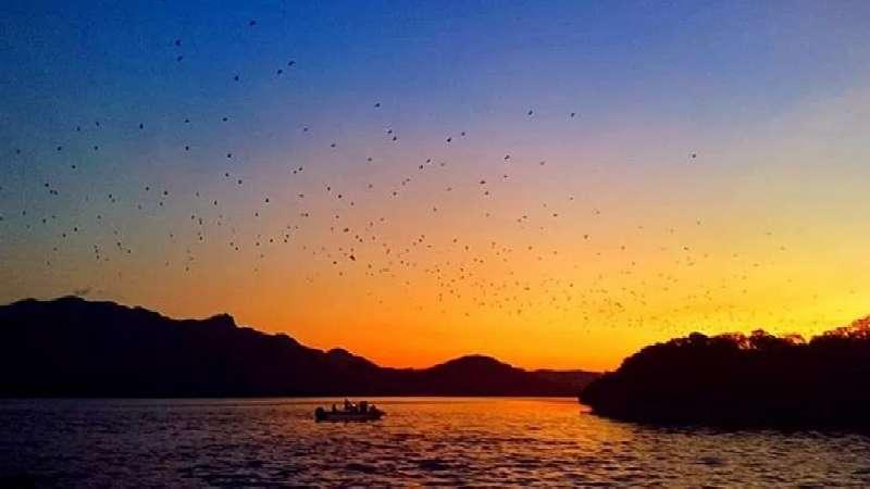 foto pulau kalong
