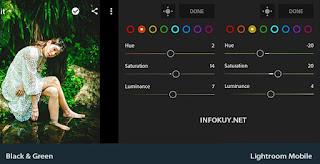 MIX - Tutorial Edit Foto Black and Green Lightroom