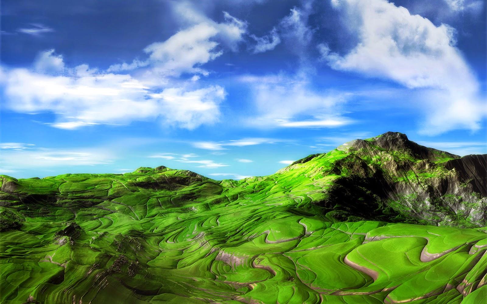 1200x1600 Wallpaper Hd: Greenery 3D Under Sky HD Wallpaper