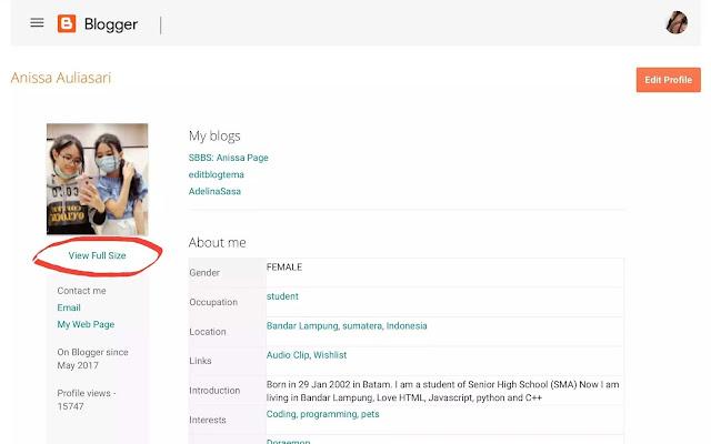 profile ID akun blogger