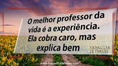 O melhor professor da vida é a experiência. Ela cobra caro, mas explica bem