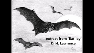 Bat By David H. Lawrence Summary & Analysis [Non-African Poetry]