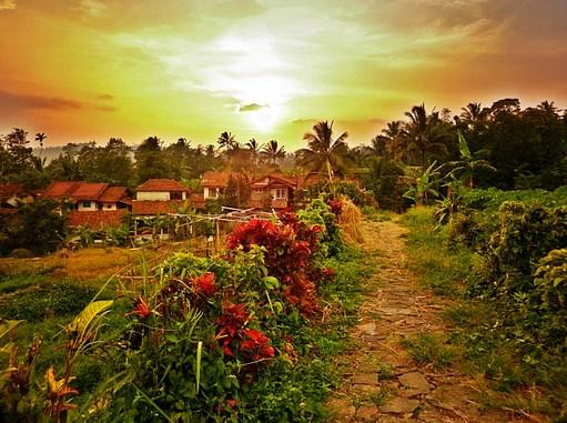 Peluang Usaha dan Bisnis di Kampung
