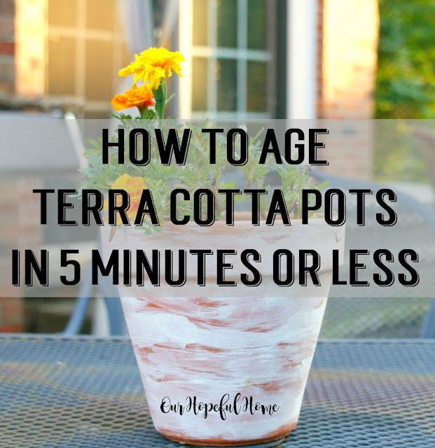 terra cotta pot marigold plant
