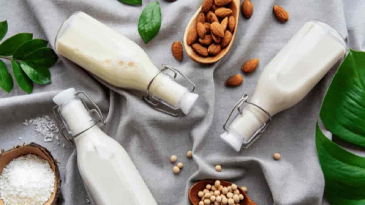 vantagens do leite vegetal