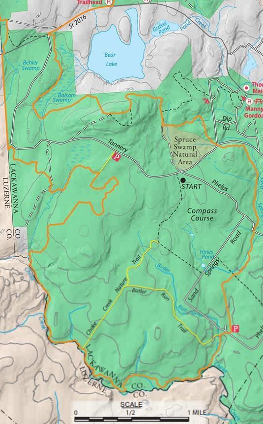 Gone Hikin': Pinchot State Forest, PA - Pinchot Trail South on