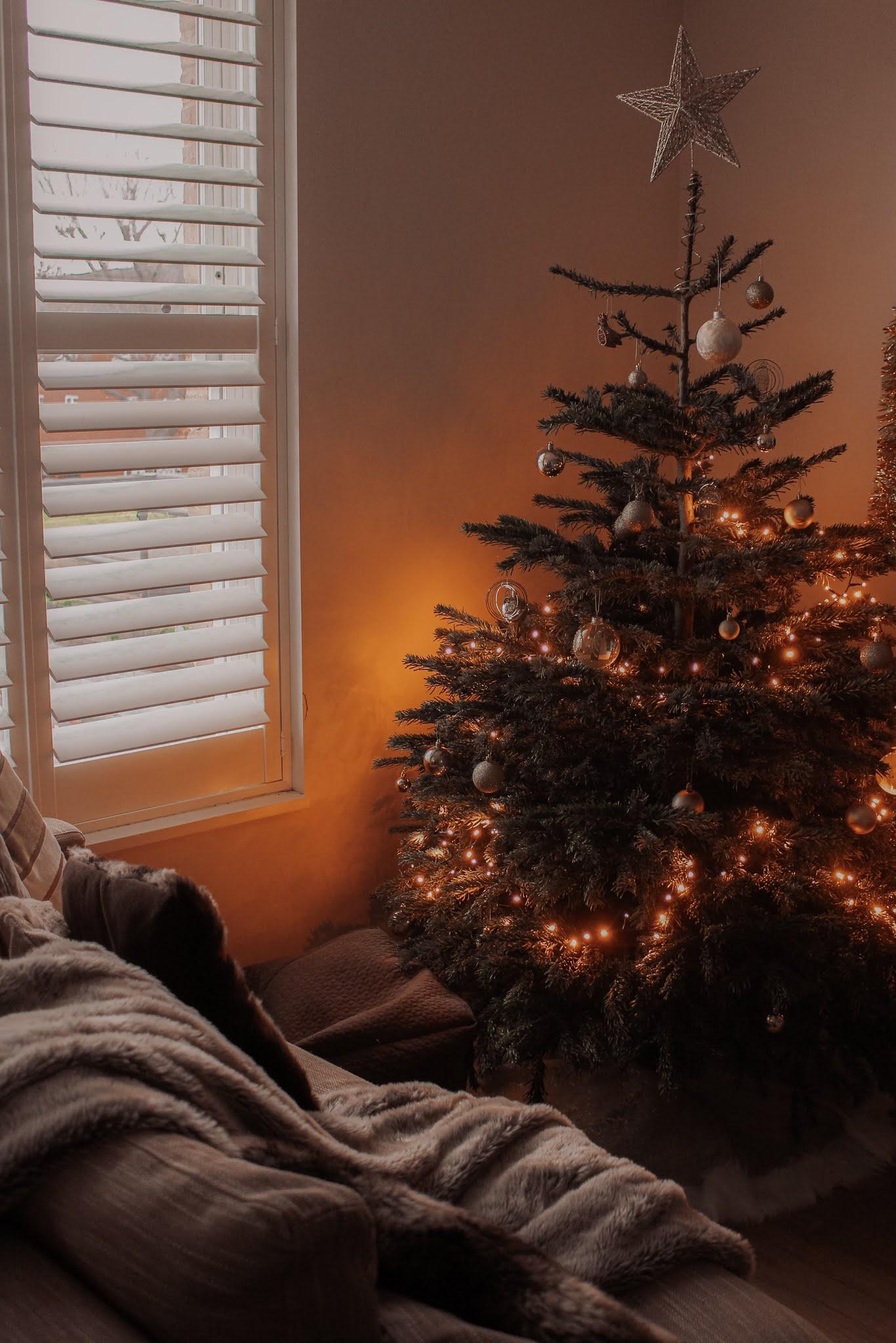 London Nordmann Fir 6ft Christmas Tree