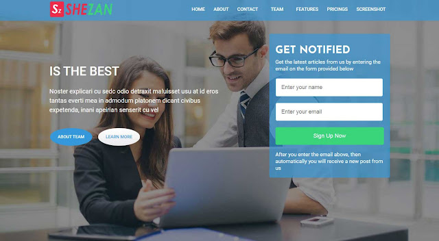 Shezan Landing Page AMP Free Blogger Template