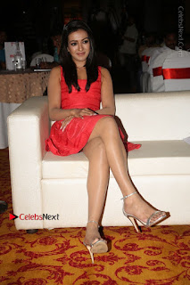 Actress Catherine Tresa Unveils Intex Air Conditioners  0160.jpg