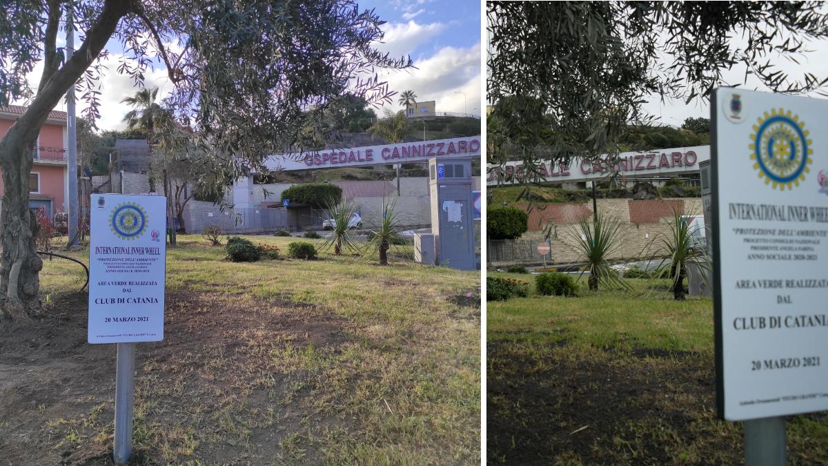 Riqualifica verde rotatoria Ospedale Cannizzaro