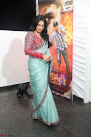 Regina Casandra in Lovely Beautiful saree Stunning Pics ~  Exclusive 27.JPG