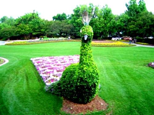 33 περίτεχνες ιδέες αρχιτεκτονικής τοπίου για τον κήπο