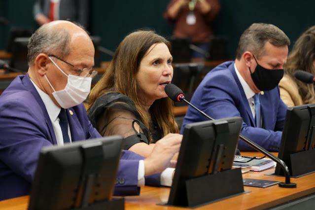 Por 23 votos a 11, comissão especial rejeita PEC do voto impresso