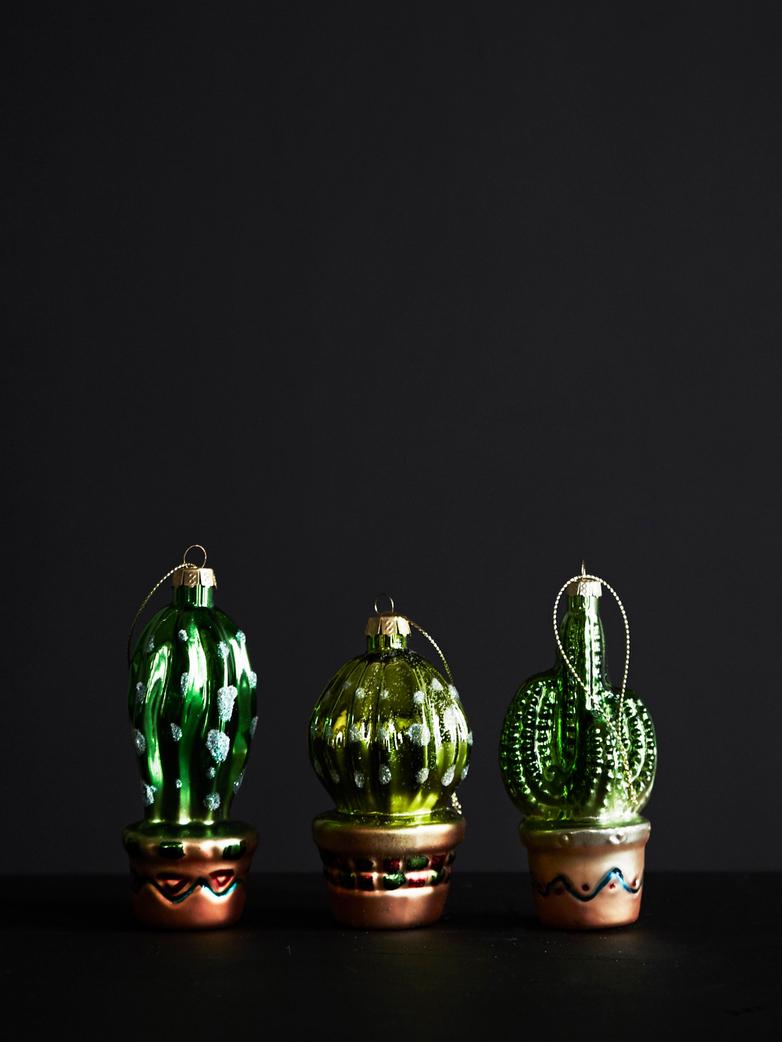 Bombka kaktus