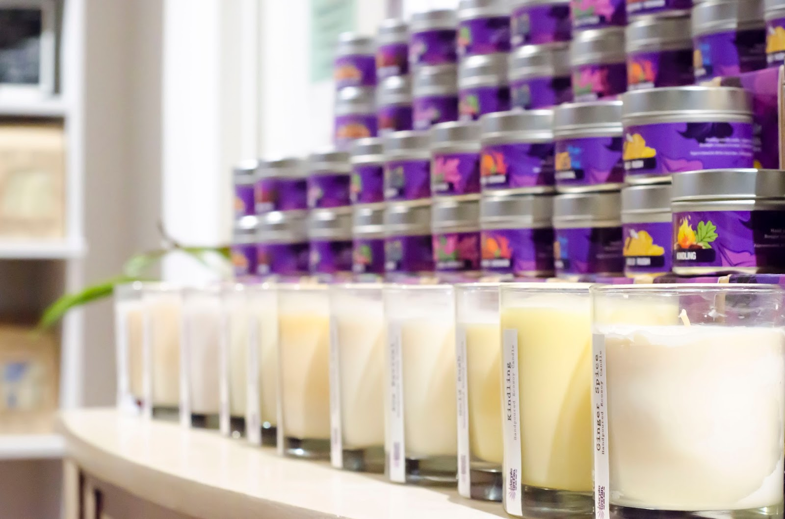 Purple Urchin Eco Wax Soy Candles on display in store with shallow depth of field