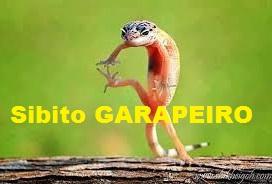 O Sibito Garapeiro perderá a eleição pra sua soberba!!!