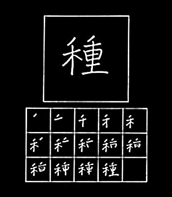 kanji bibit/biji