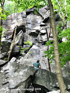 The Shield, rattlesnake rocks, rock climbing, cragging, boston