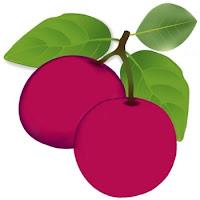 Frutas Exóticas en Venezuela
