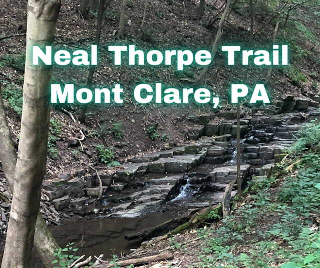 Tranquil Yet Rugged Hike Full of Waterfalls on the Neal Thorpe Trail in Mont Clare, Pennsylvania