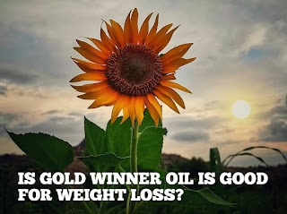 is gold winner is good for weight loss?