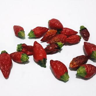 Very Hot Red Ornamental Pepper, Spice, Vegetable, Macro