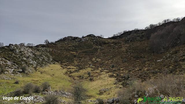 Vega de Ciarda, Cangas de Onís