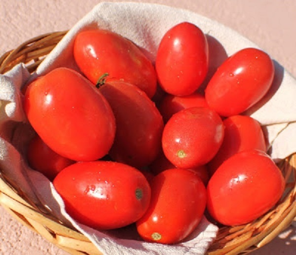 these are fresh plum tomatoes in a napkin lined wicker basket