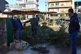 Έπεσε μεγάλο δέντρο στην πλατεία Αγίου Πέτρου στο Άργος