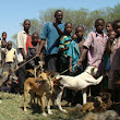 We're raising £3,000 to Help the Zimbabwe project by VAWZ (Veterinarians for Animal Welfare Zimbabwe) to URGENTLY vaccinate rural dogs against Rabies