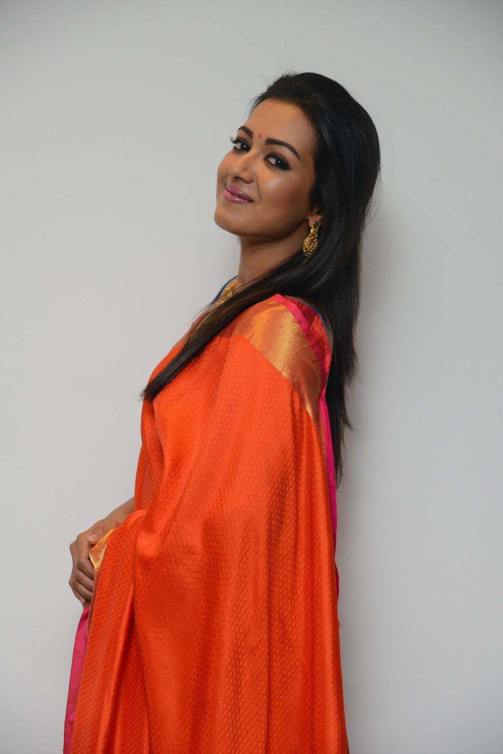 Desi Actress Pictures Catherine Tresa Look Beautiful In -6544