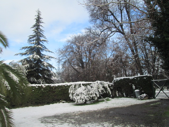 Chile winter (snowing)