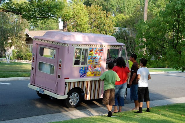 #USChronicles : Boy armed with gun robs ice cream truck driver !