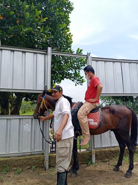 Memeriksa Kuda dan Peralatan Berkuda