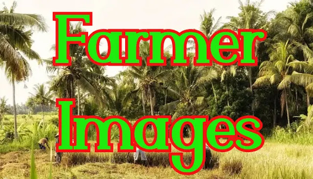 Real Farmer Images HD Download Free