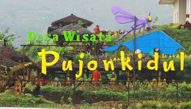 lokasi Cafe Sawah Pujon Malang
