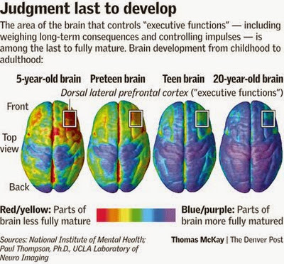 """startling finds on teenage brains by paul thompson Student study guide """"juvenile justice """" startling finds on teenage brains startling finds on teenage brain by paul thompson."""