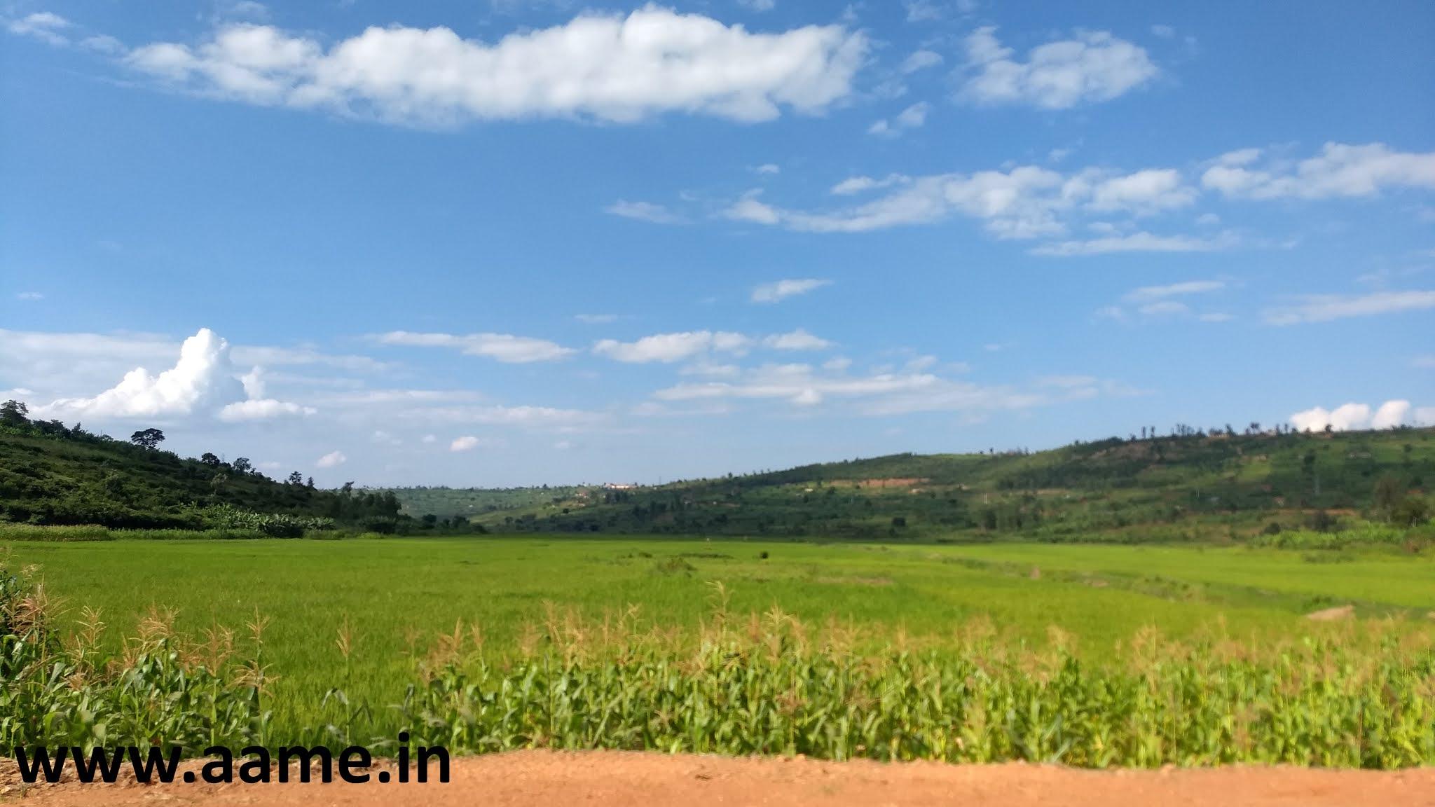 Rwanda - Landscape - 01